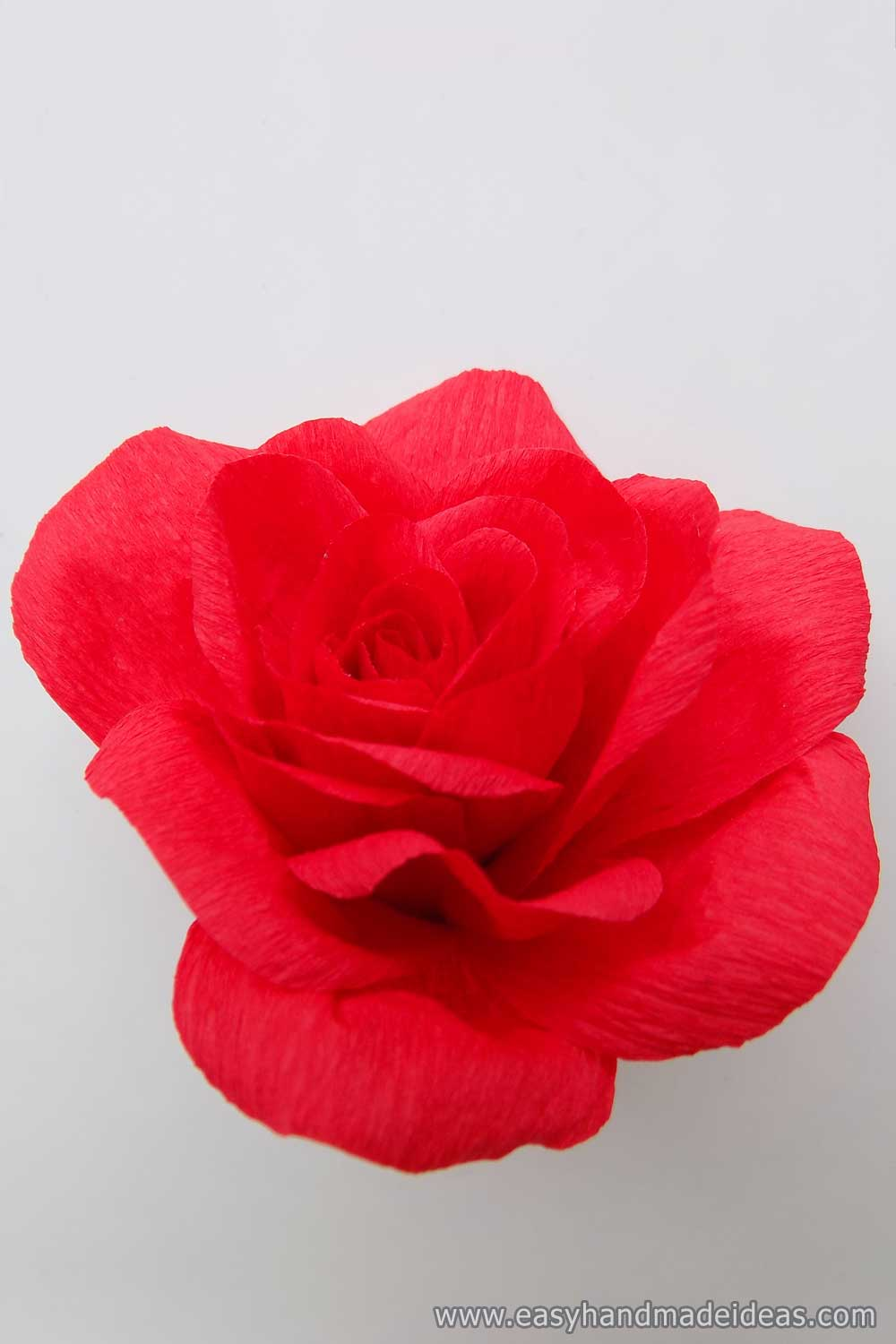 Rose Fro Crepe Paper