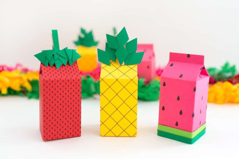 Fruit Themed Party Favor Boxes